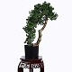 Sharetrade Artificial Plant and Tree Manufacturer Co., Ltd